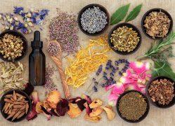 naturopathic-medicine